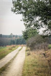 Schotterweg führt weiter