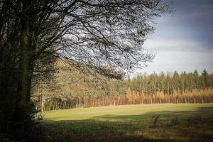 Wandern Burgebrach