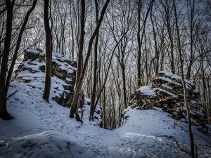 Durch Felsentor im Wald