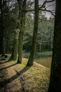 Kupferweiher bei Obermainbach