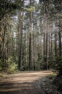 Breiter Weg beschreibt Kurve