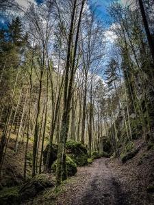 Weg aus dem Tal zwischen Felsen empor