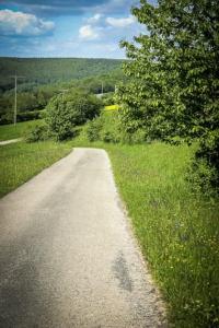 Breiter Weg außerhalb des Waldes