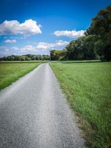 Langes Wegstück durch die Mainwiesen
