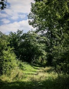 Breiterer Wiesenweg