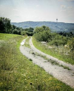 Breiter geschotterter Weg