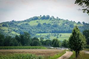 Der Petersberg bei Bad Windsheim