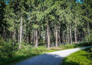 Breiter Schotterweg