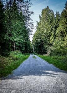 Breiter Schotterweg an Nordflanke