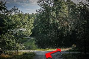 An Waldlichtung leicht rechts halten