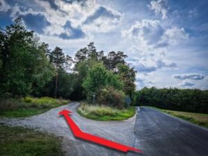 Weg nach links in Richtung Schlegelwarte