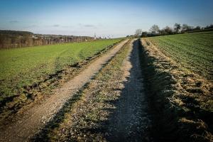 Weg Richtung Burgwindheim