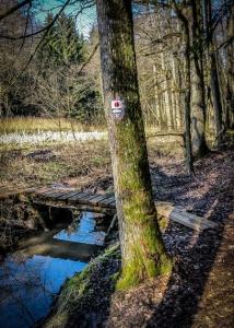 Holzsteg über den Bach