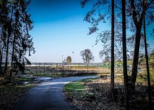 Aus dem Wald heraus zum Willi-Schillig-Stadion