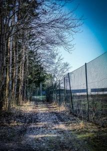 Am hohen Zaun entlang