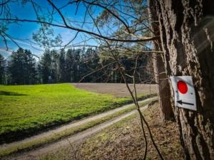 Am Waldrand nach rechts abbiegen